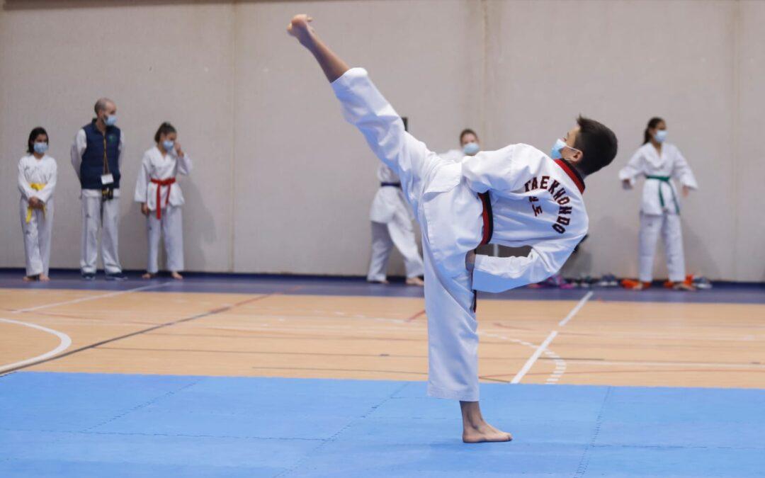 El Ayuntamiento destaca la apuesta andaluza por celebrar en Jaén el Open de Adultos y el Torneo de Exhibición de Taekwondo